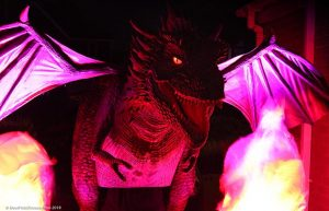 Flame the Dragon on walkabout